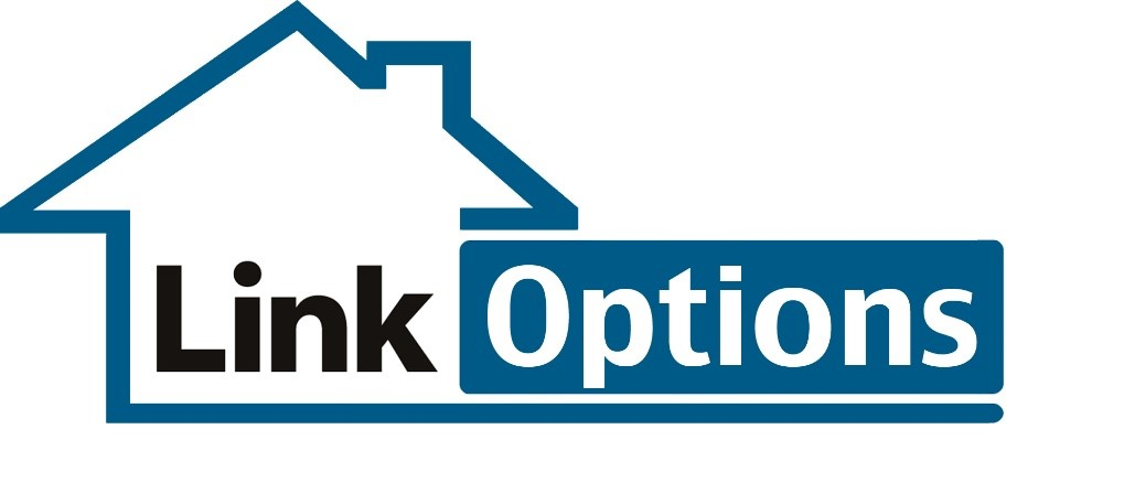 Link Options Logo